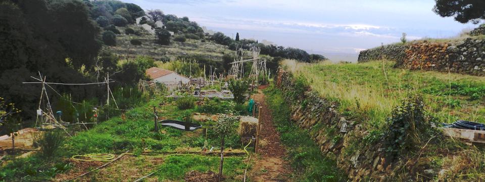 restanques jardin paratgés coupereau carqueiranne vue d'ensemble