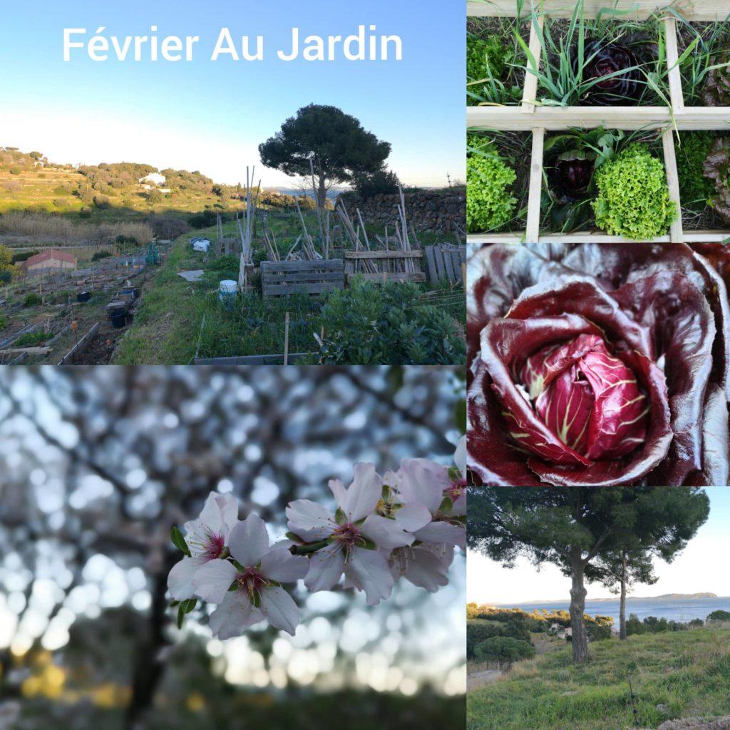 instant partagé récolte jardin carqueiranne